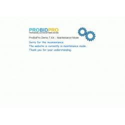 v7.4 to v7.8 - PHP ProBid Custom Maintenance Mode Description