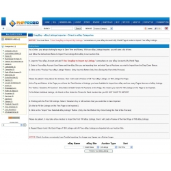 "SnagBay ""Lite"" eBay Listings Importer V1 - Direct to eBay Categories for 6.07"