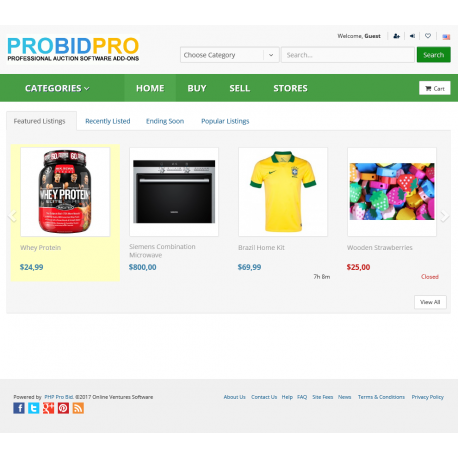 7.XX - PHP ProBid Kelly Green Theme - Home Page CSS Fixes